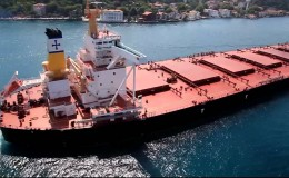 Diana Shipping, Diana Containerships