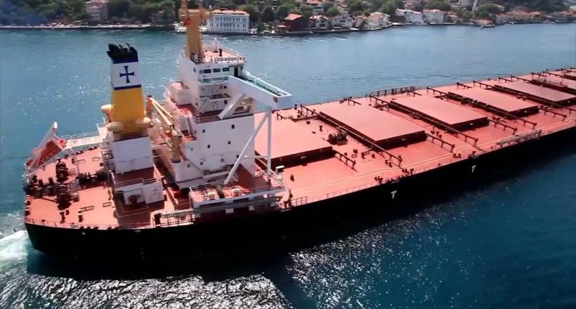 Diana Shipping, Diana Containerships