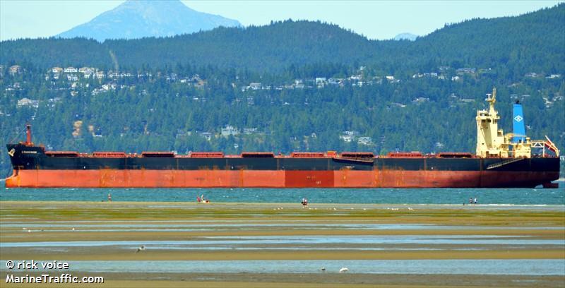 K.Endeavor_bulk carrier