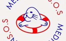 mesogios_logo_new_MEDSOS