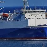 blue carrier paros 1